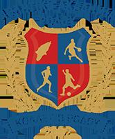 Αθλητική Ακαδημία Ρόδου